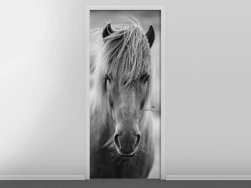 Türtapete Da Steht Ein Pferd Auf`m Flur