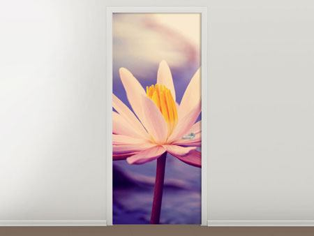 Türtapete Lotus bei Sonnenuntergang