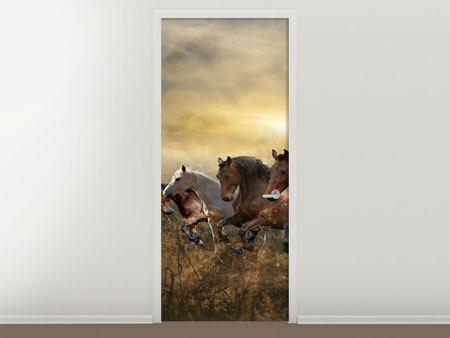 Türtapete Wilde Pferde