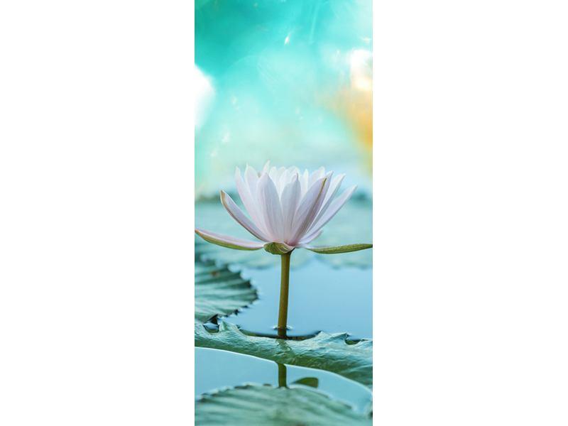Türtapete Verträumte Lotus