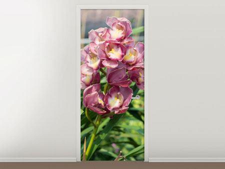 Türtapete Wilde Orchideen