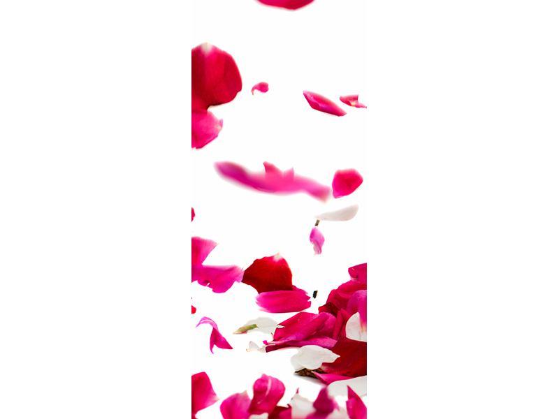 Türtapete Für mich soll`s rote Rosen regnen