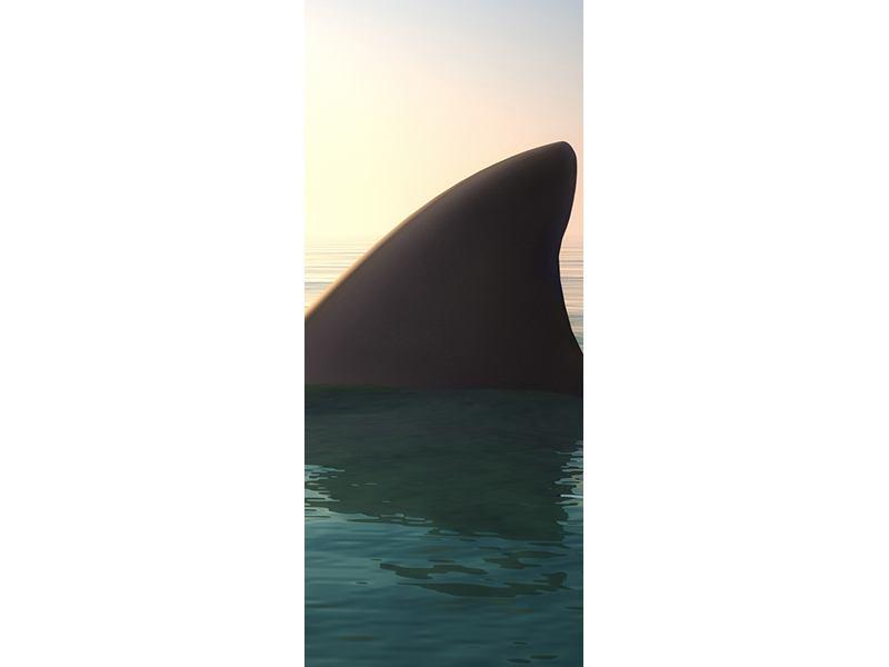 Türtapete Haifischflosse