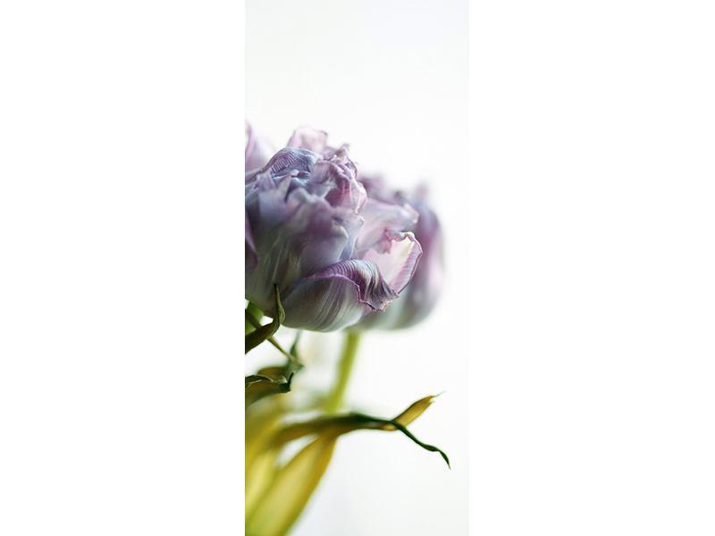 Türtapete Der Tulpenstrauss
