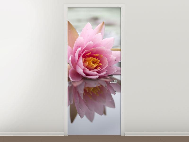 Türtapete Lotus