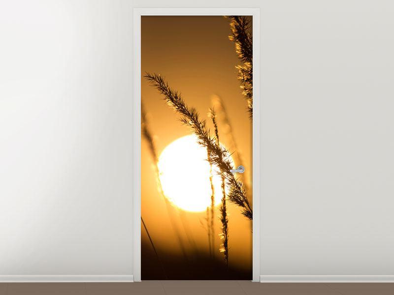 Türtapete Romantischer Sonnenuntergang