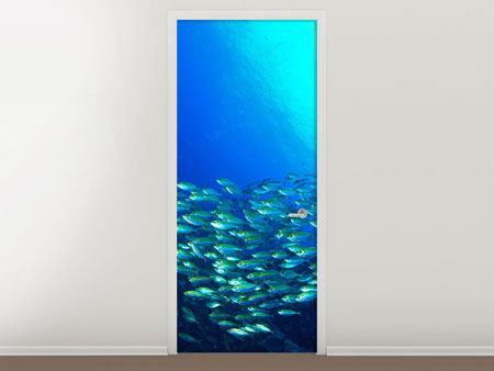 Türtapete Fischschwarm