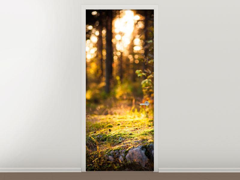 Türtapete Der Wald im Hintergrund
