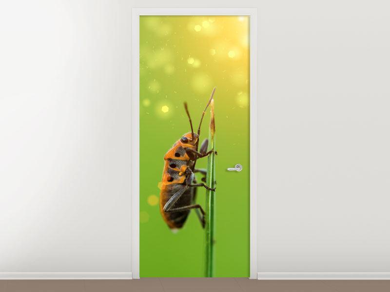 Türtapete Das Insekt