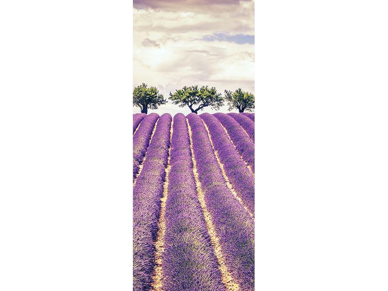 Türtapete Das Lavendelfeld