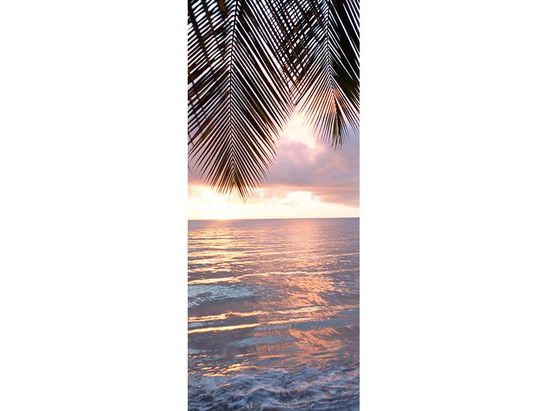 Türtapete Unter Palmenblätter