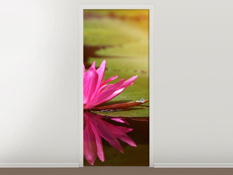 Türtapete Lotus im Wasser
