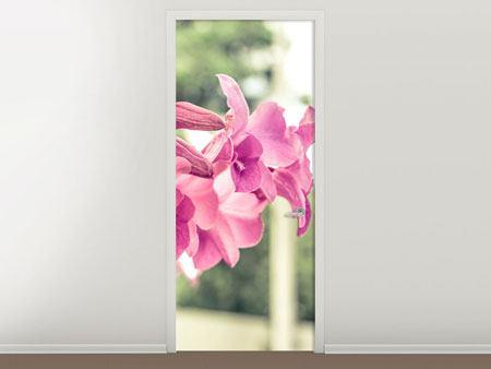 Türtapete Ein Fensterplatz für die Orchideen