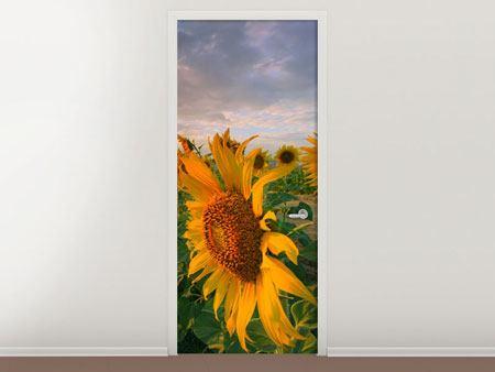 Türtapete Sonnenblumen im Lichtspiel