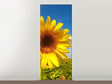 Türtapete Das Feld der Sonnenblumen