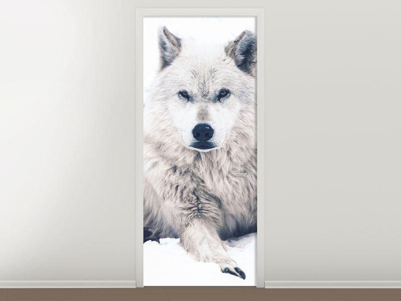 Türtapete Der Wolf