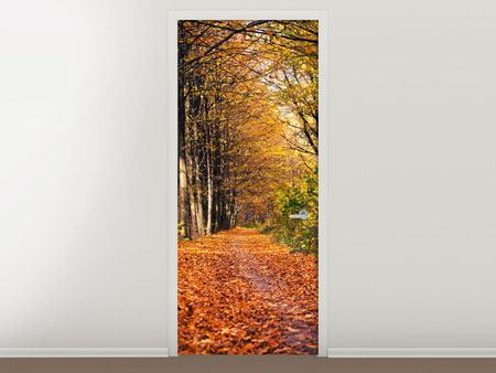 Türtapete Laubwald im Herbstlicht