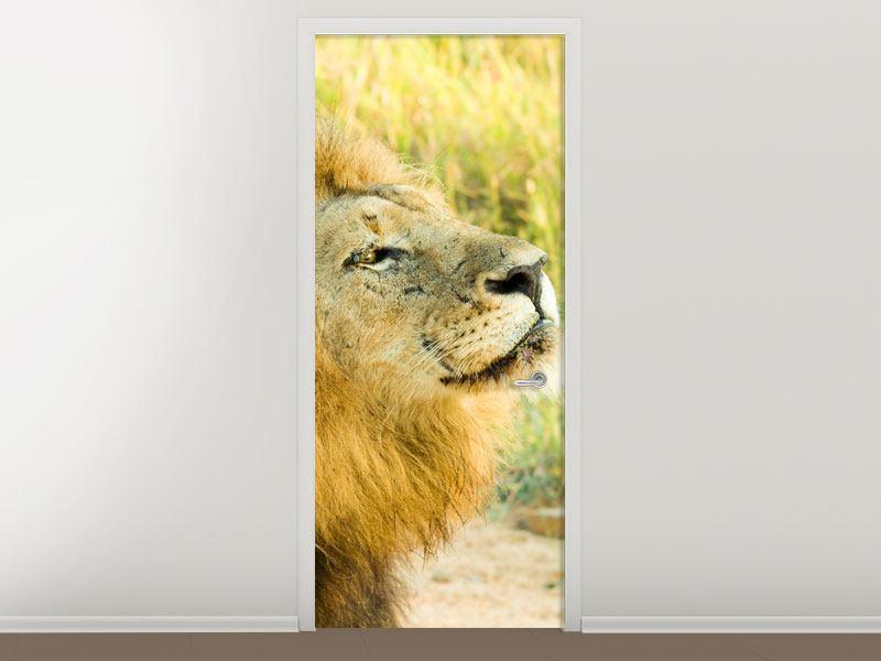 Türtapete Der König der Tiere