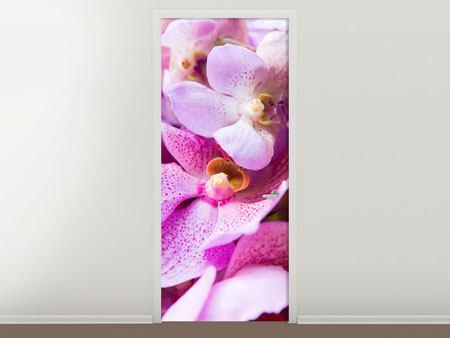 Türtapete Im Orchideenparadies