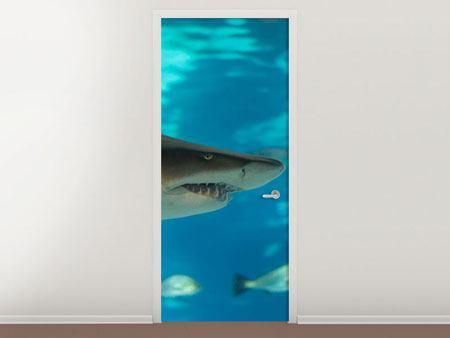Türtapete Der Haifisch