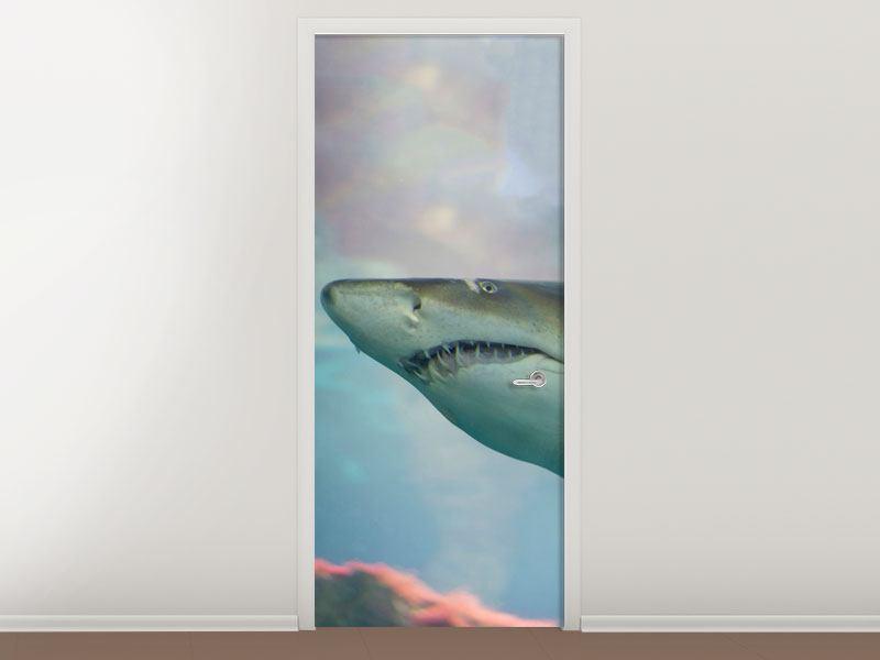 Türtapete Hai