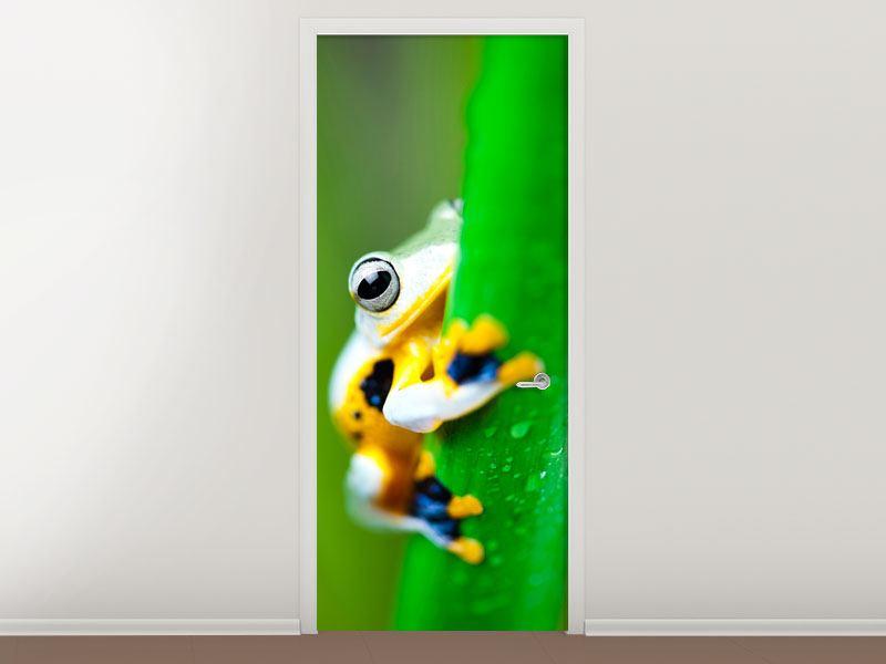 Türtapete Der Frosch