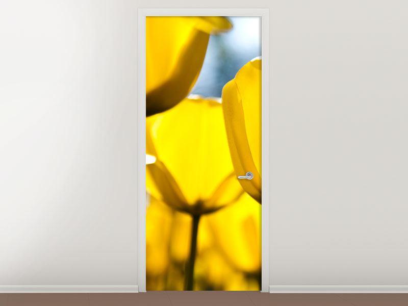 Türtapete Gelbe Tulpen in XXL