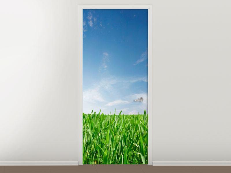 Türtapete Das Gras