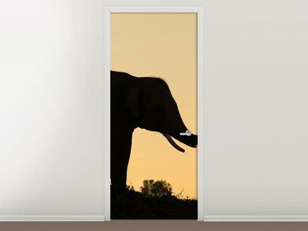 Türtapete Elefant an der Wand