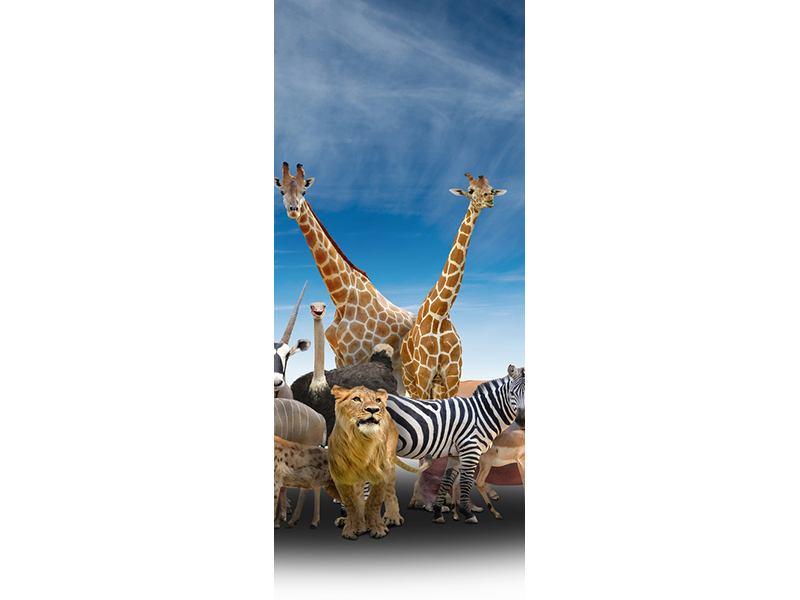 Türtapete Der Zoo