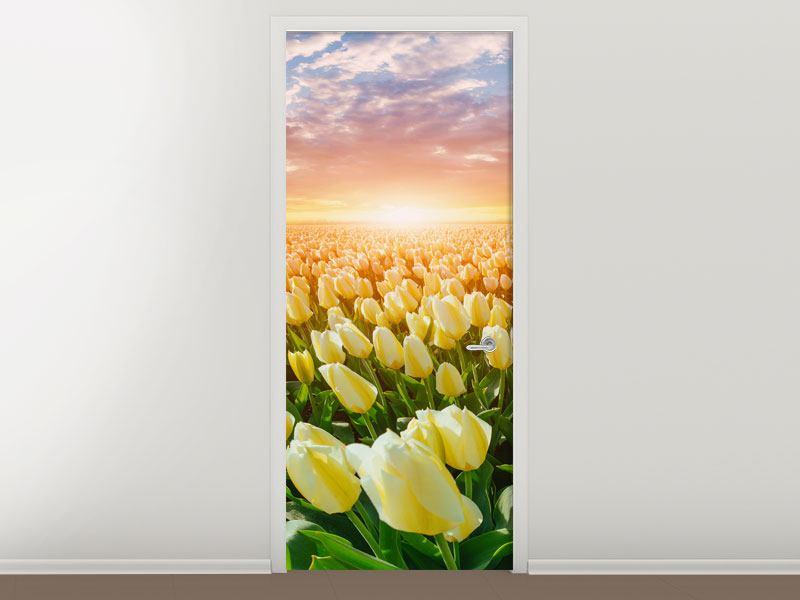 Türtapete Sonnenaufgang bei den Tulpen