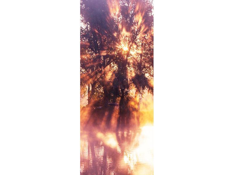 Türtapete Die Waldspiegelung