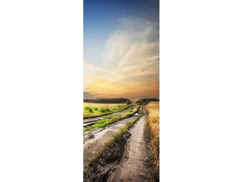 Türtapete Sonnenaufgang am Feld