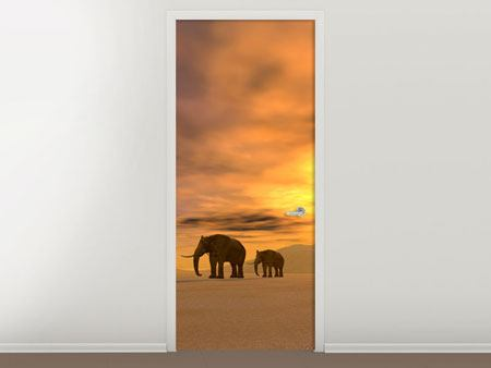 Türtapete Wüstenelefanten