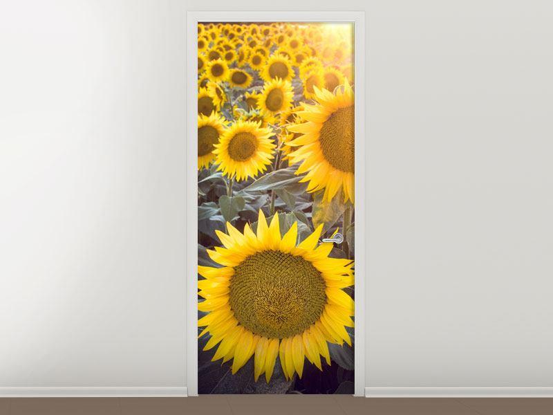 Türtapete Die Sonnenblumenperspektive