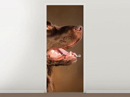 Türtapete Der Jagdhund im Profil