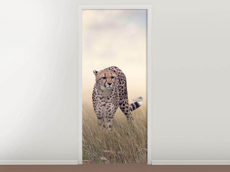 Türtapete Der Gepard