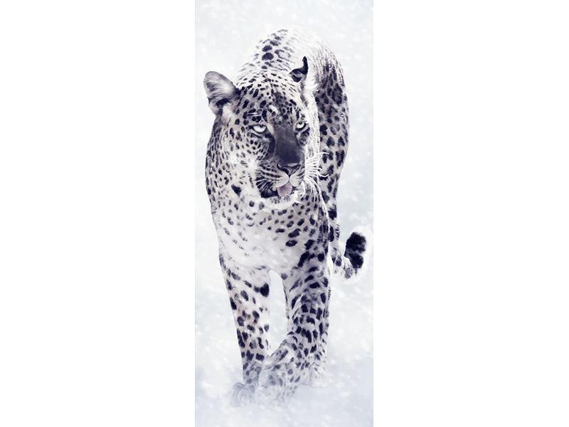 Türtapete Der Leopard