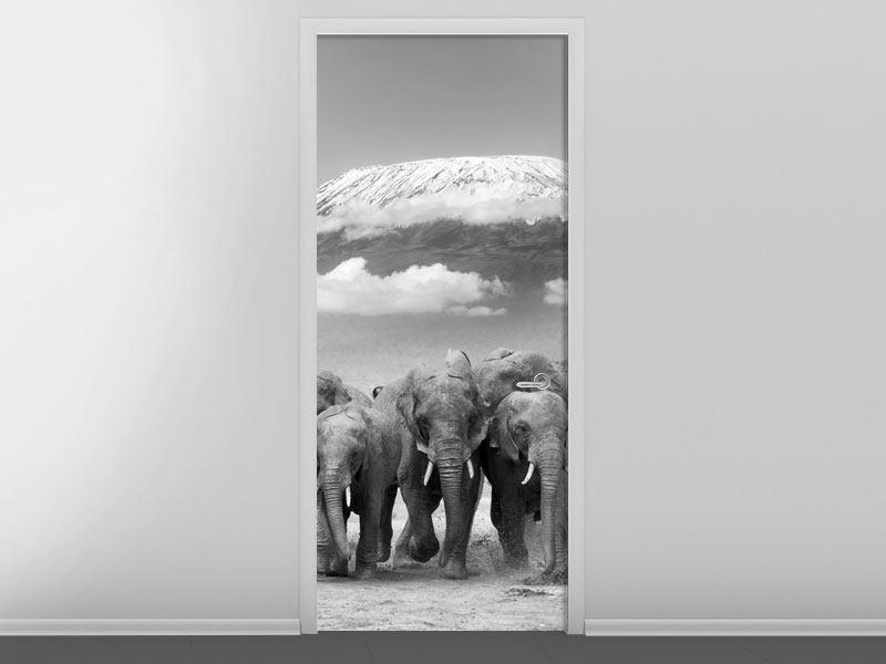 Türtapete Elefantenherde