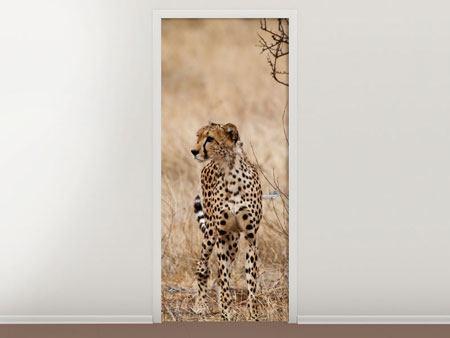 Türtapete Eleganter Gepard