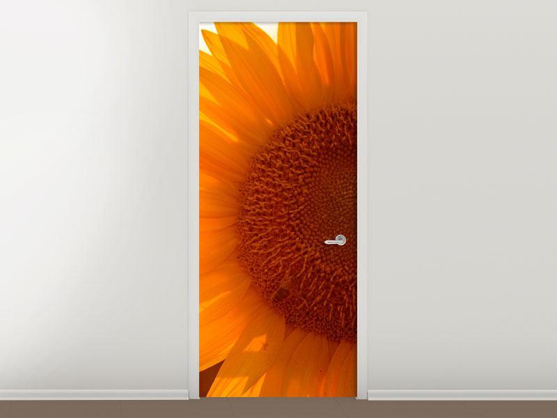 Türtapete Macro-Sonnenblume