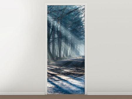 Türtapete Wald im Lichtstrahl