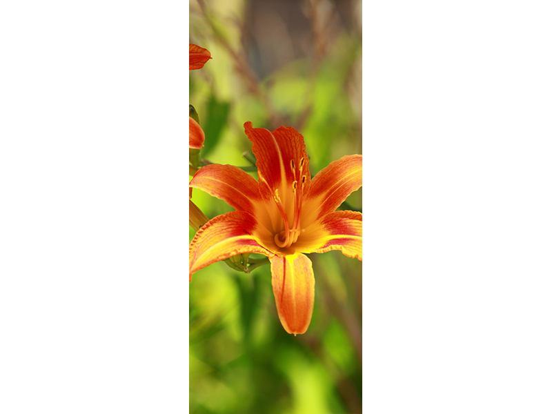 Türtapete Lilien in der Natur