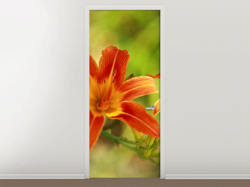Türtapete Natural Lilien