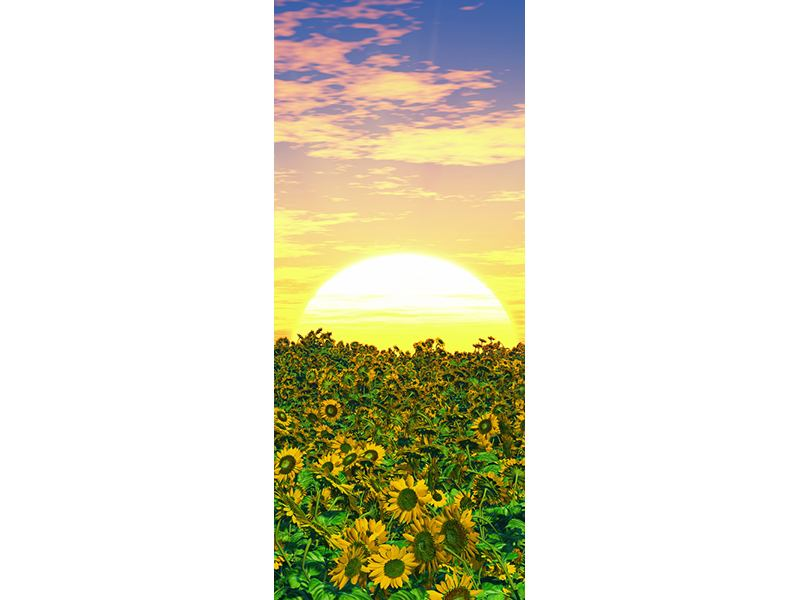 Türtapete Blumenpanorama bei Sonnenuntergang