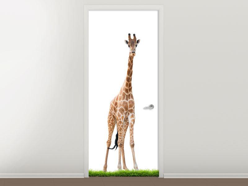 Türtapete Die lange Giraffe