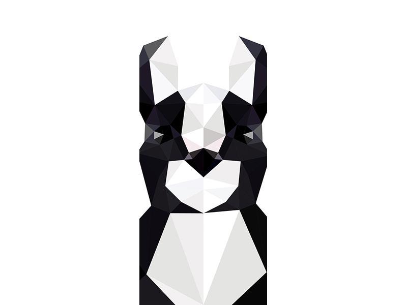 Türtapete Origami Bulldogge