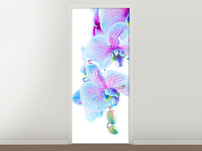 Türtapete Orchideen-Schmetterling