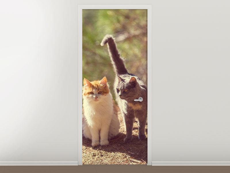 Türtapete Katzen im Garten