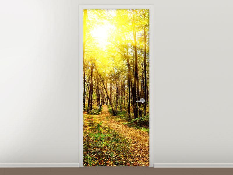 Türtapete Waldspaziergang in der Herbstsonne